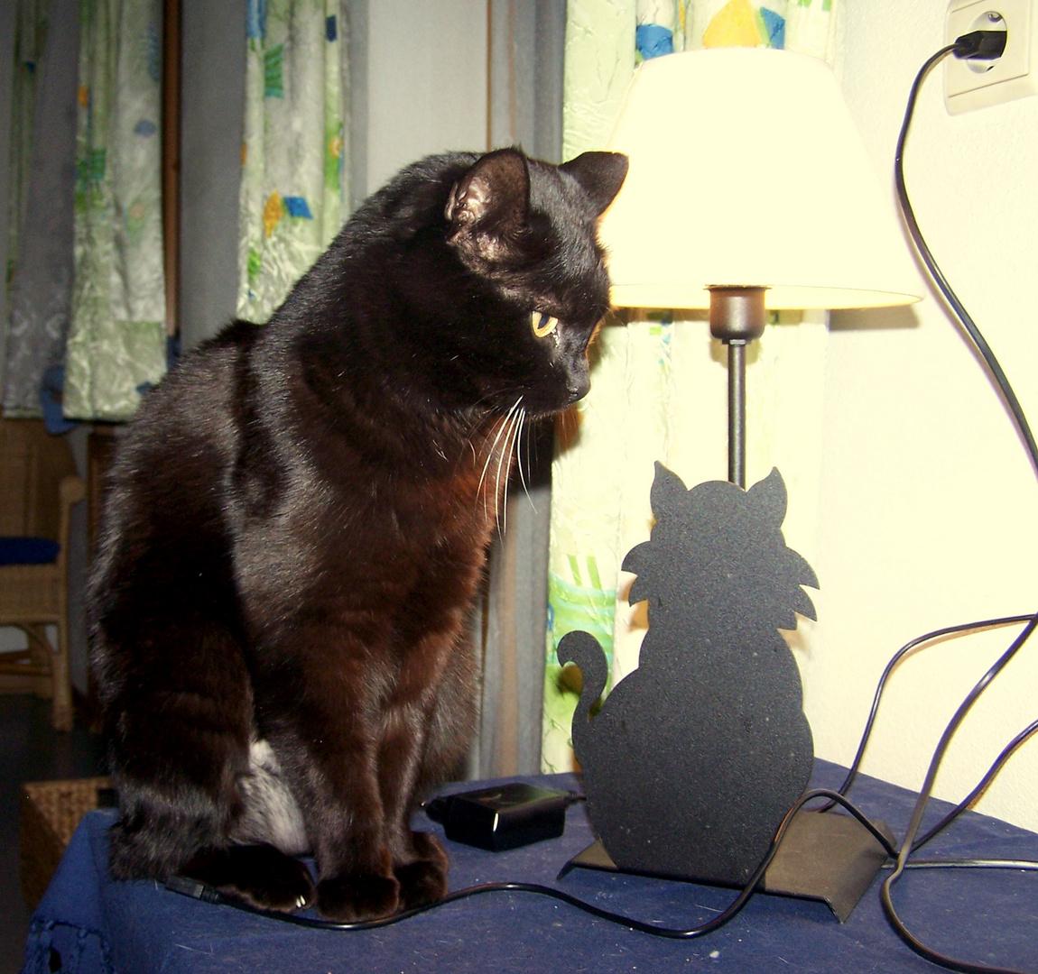 Lieber Lampengeist, ich wünsche mir....ich wünsche mir....Wieviele Wünsche habe ich denn frei???