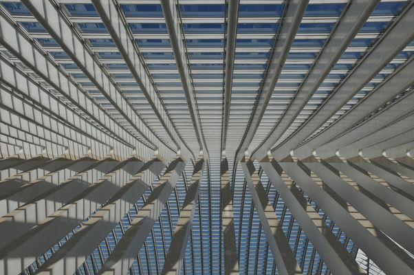 Liege-Guillemins Deckenkonstruktion 2