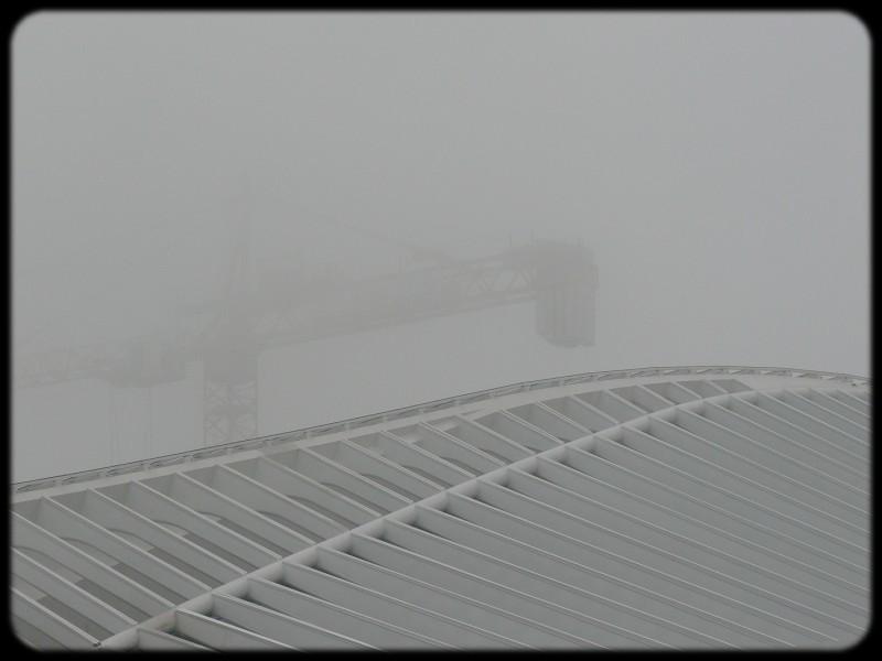 Liège Guillemins - gare Calatrva et grue dans la brume matinale - décembre 2007