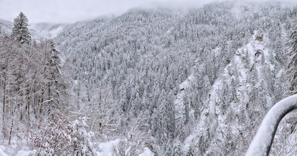 Lierbach Winter
