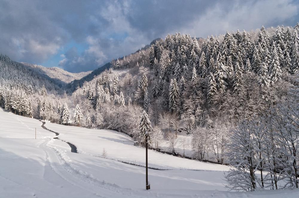Lierbach Winter II