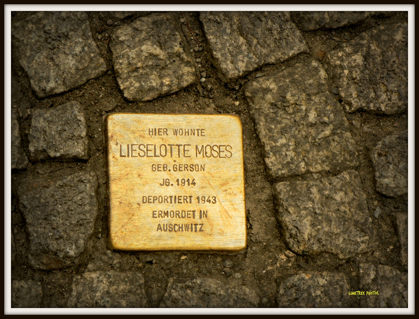 Lieselotte Moses lived here
