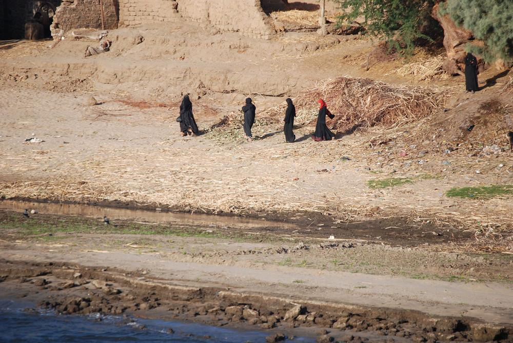 Life near the Nile river