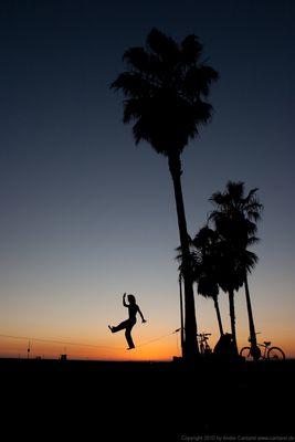 Life On Venice Beach