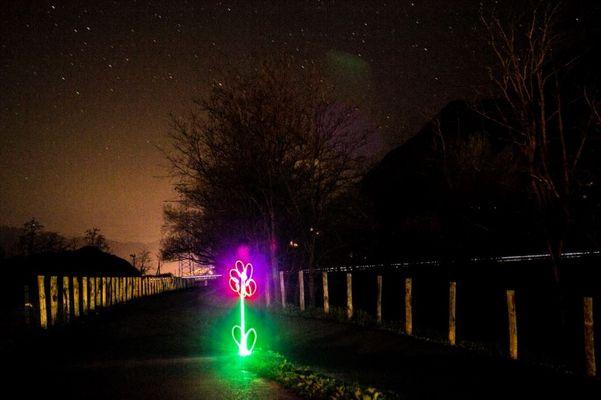 Light Graff - Fiore
