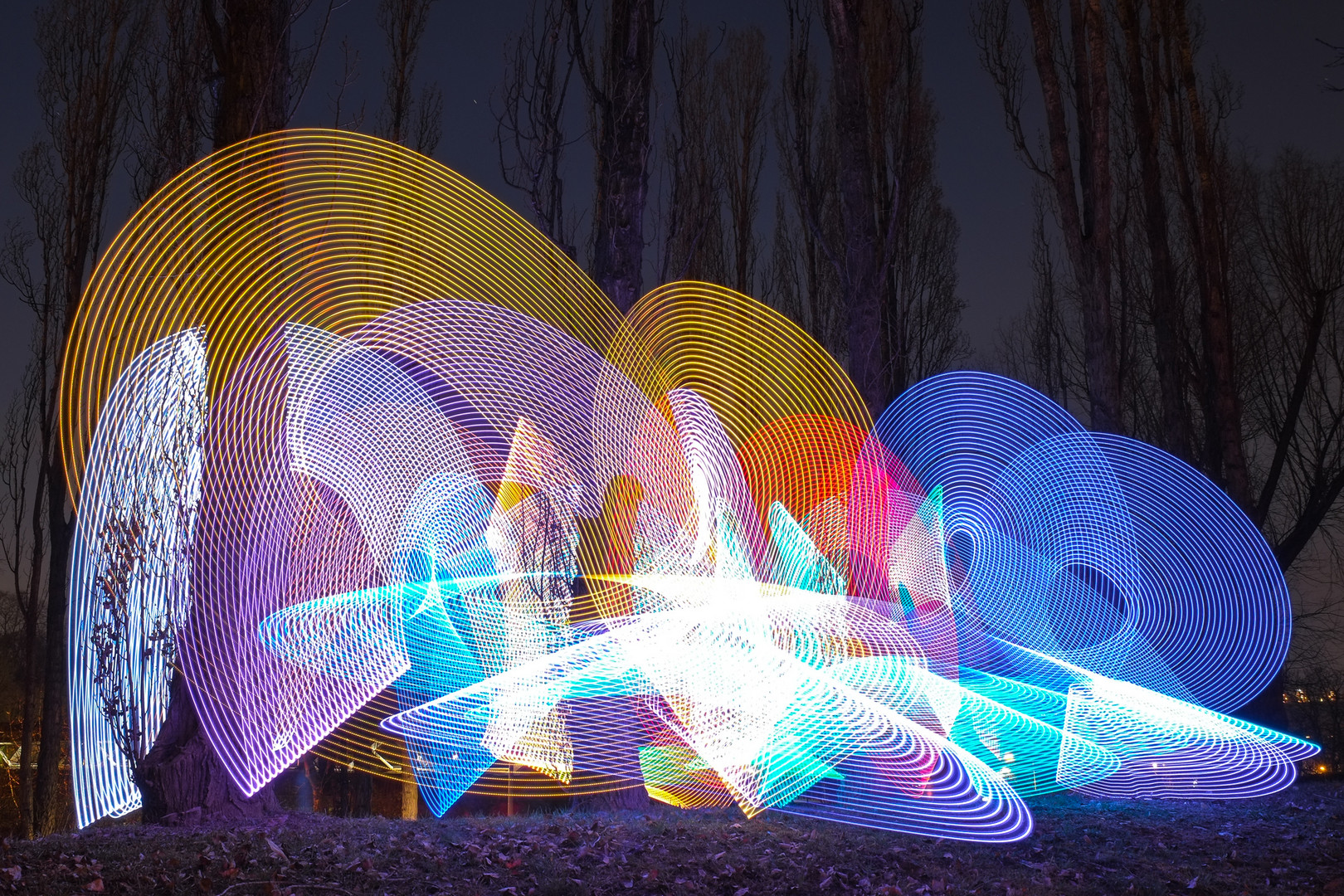 Lightpainting with trees