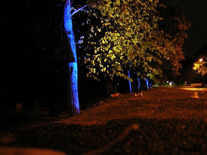 Lights in Alingsas --- Lichtinstallation