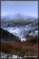 Liguria winter landscape