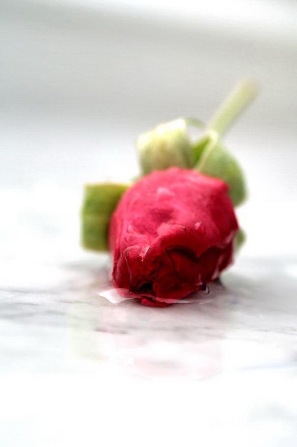Like a rose...