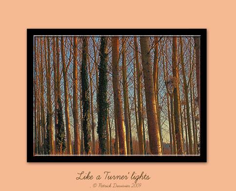 Like Turner'lights
