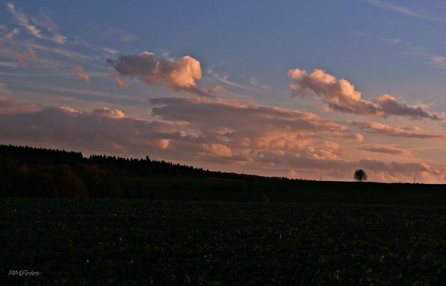 lila Wolken