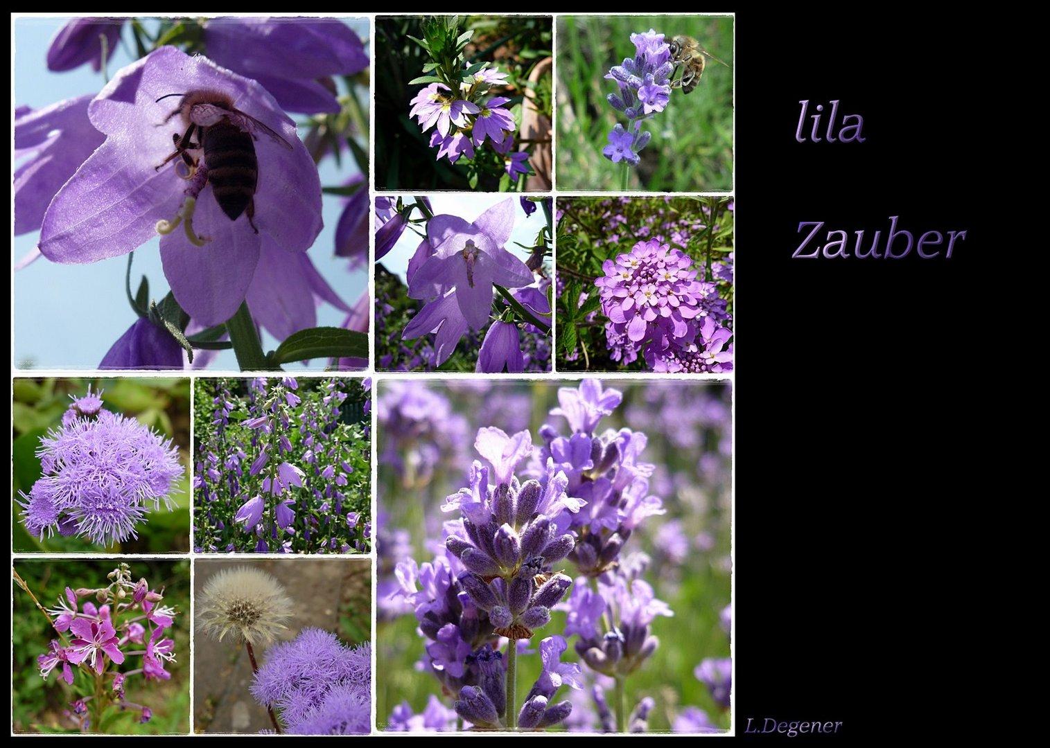 lila Zauber