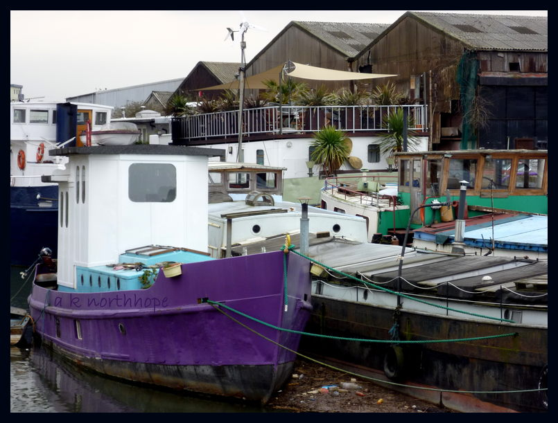 Lilac ship with Palms - East London and the whole world is Barking... woof