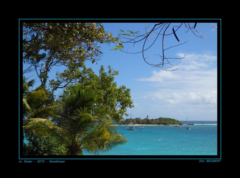L'ile Gosier - Février 2010 - Guadeloupe