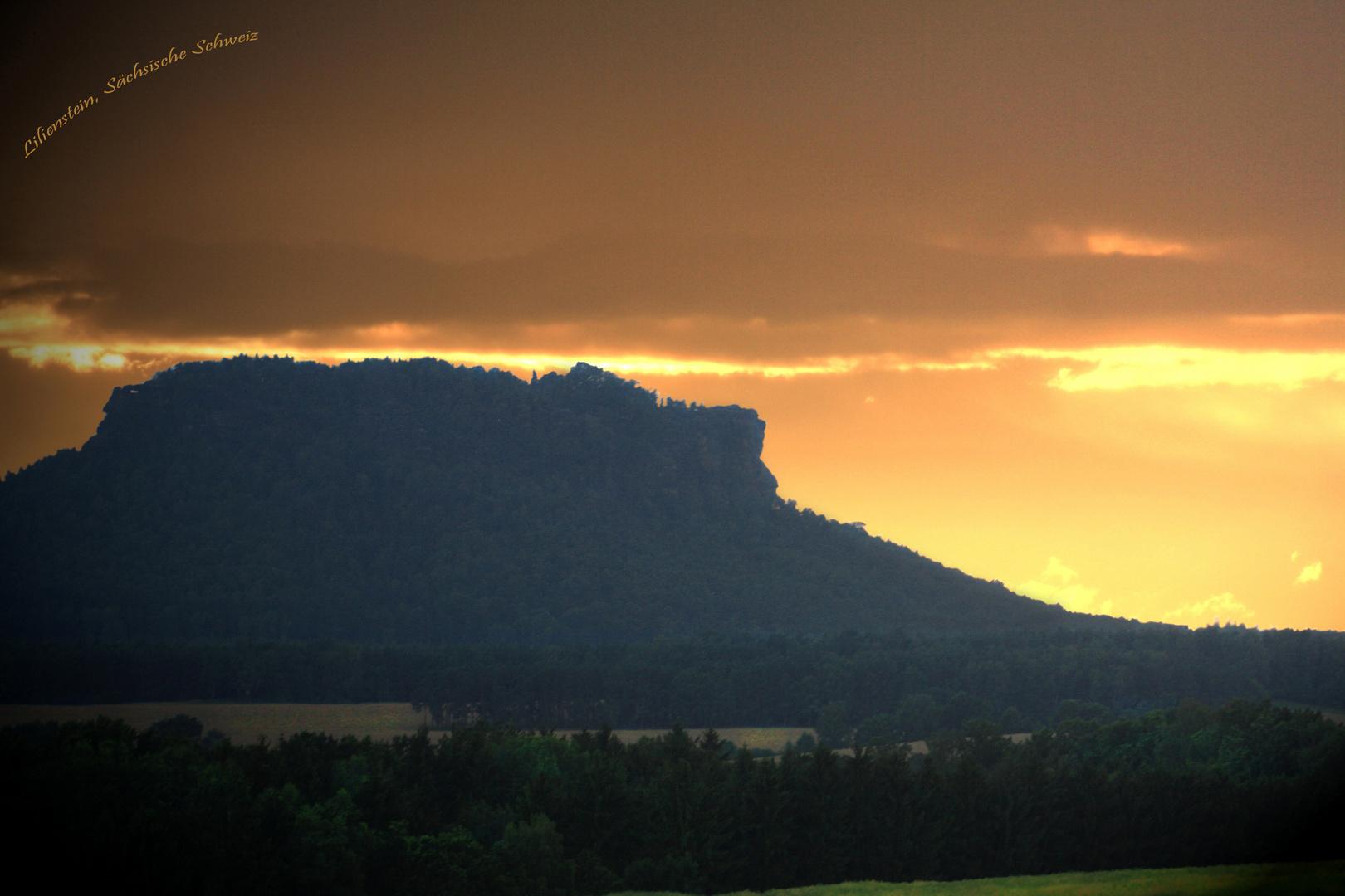 Lilienstein im Morgennebel (Sächsische Schweiz)