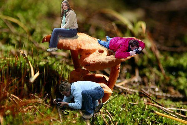 Liliput - Fotokurs