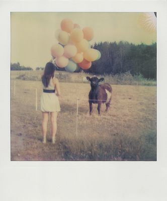 Lilly, Ballons und die Kuh