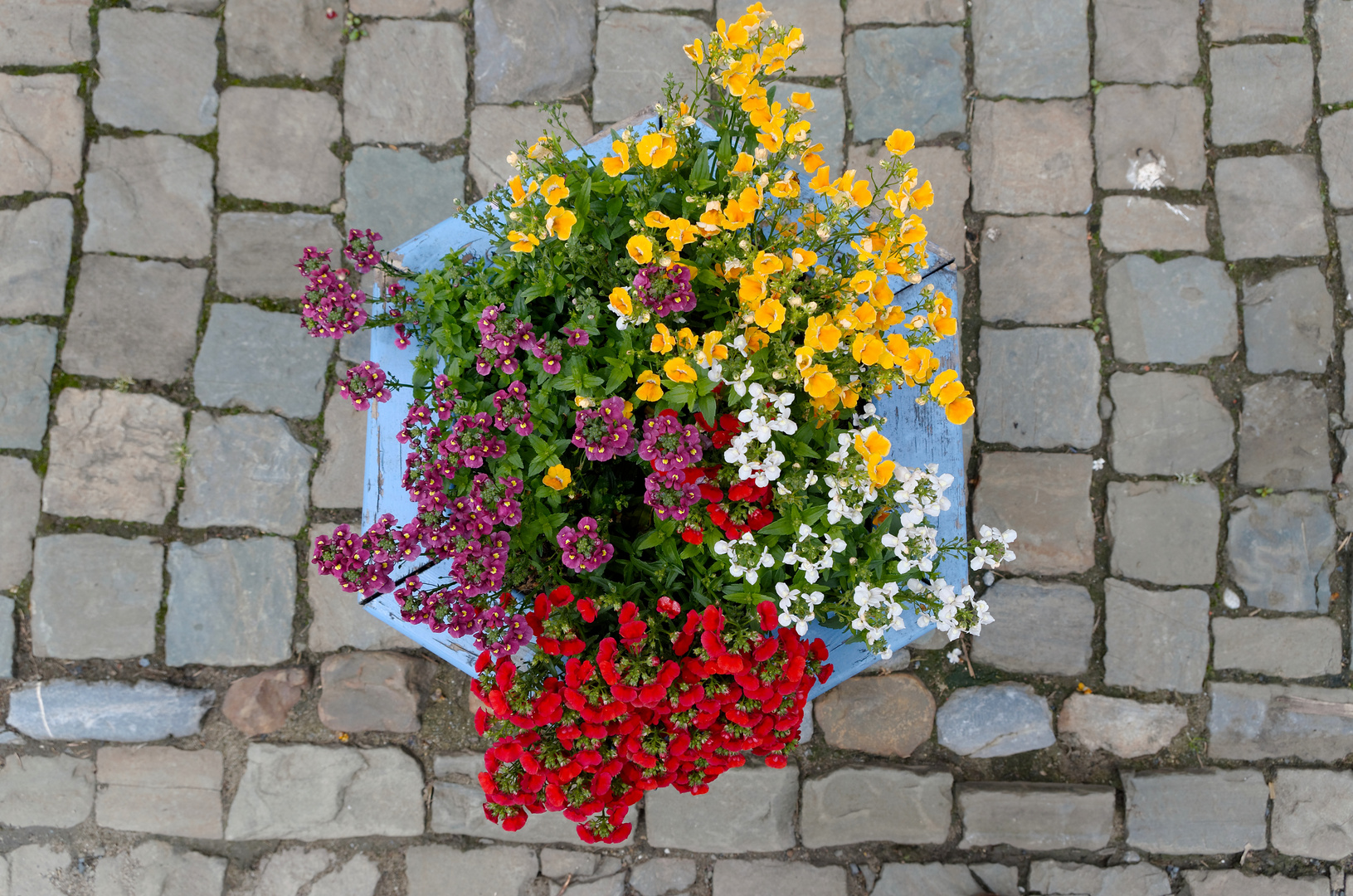 Limbourg: was Buntes