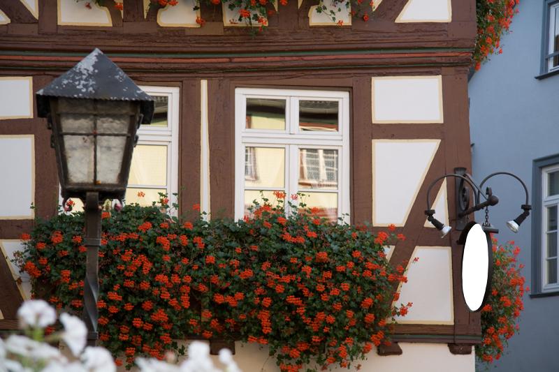 Limburger Altstadt0003
