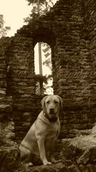 Limeswachturm bei Murrhardt mit Wachhund....