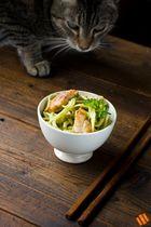 Limetten Pesto mit Hähnchen und Katze!