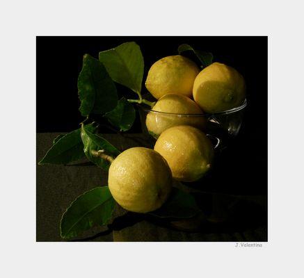 Limones (Bodegón)