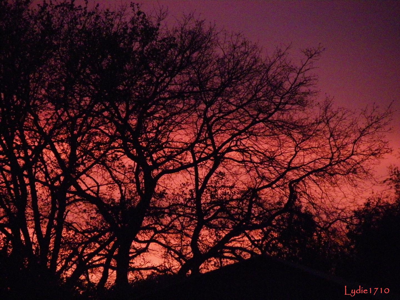 L'incidence des rayons du soleil,Magenta,Jaune-orangé et maintenant violet ...
