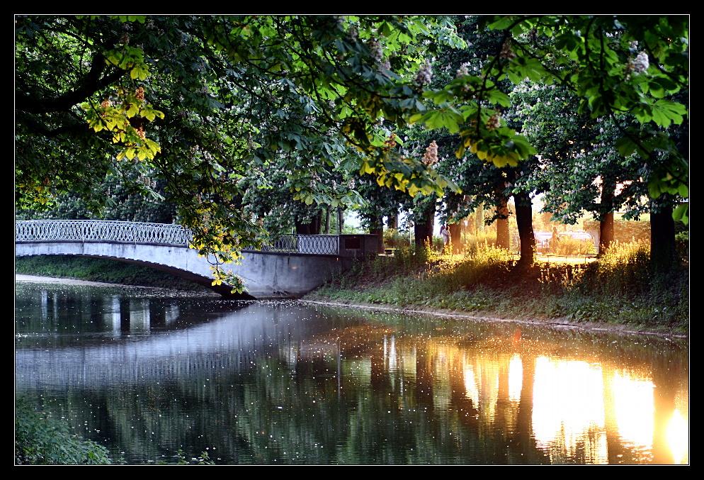 Lindenthaler Kanal #4