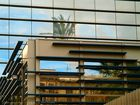 Líneas rectas y reflejos ( Passeig de Sant Joan Barcelona )