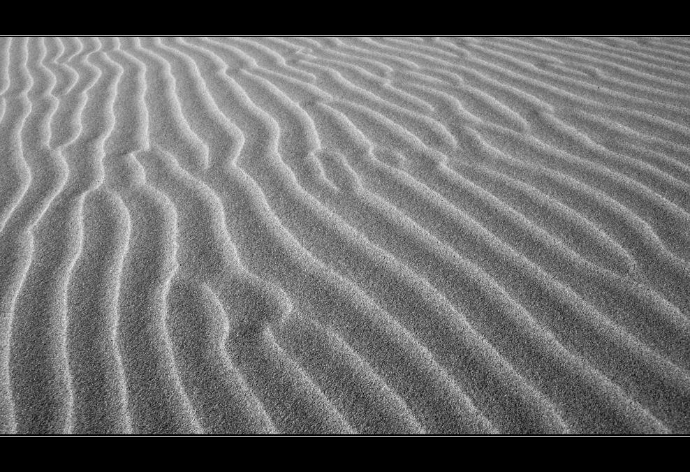 lines #3