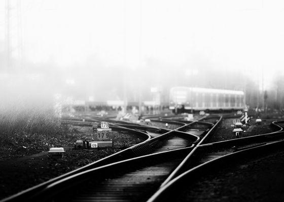 lines...-