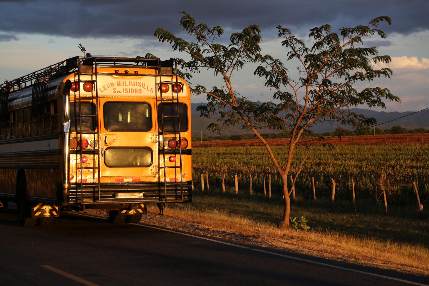 Linienbus, Nicaragua