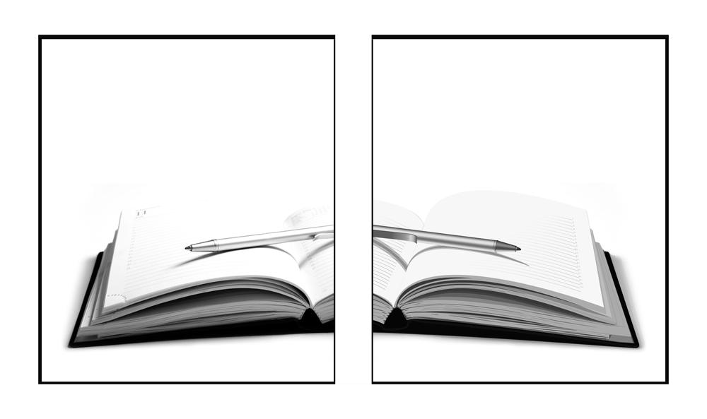links Foto-Grafie  rechts Vektor-Grafik