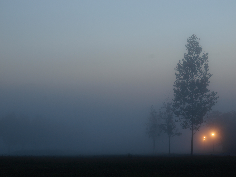 Linstow im Nebel
