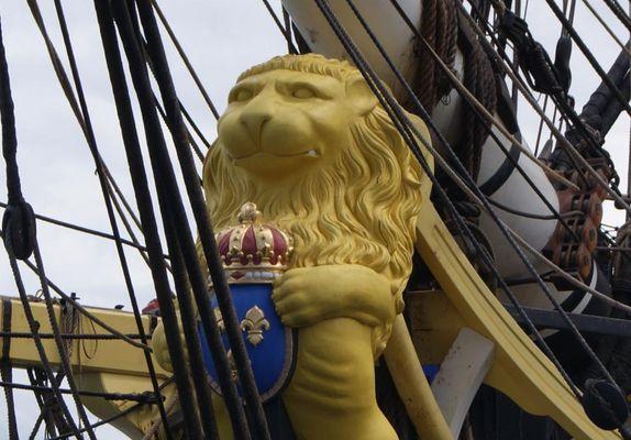 Lion Hermione