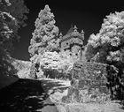 Lions Castle