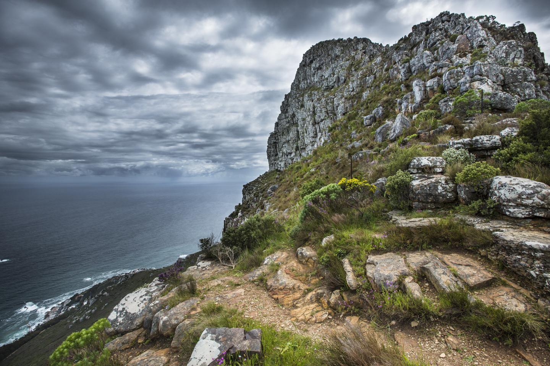 Lionshead - Cape Town