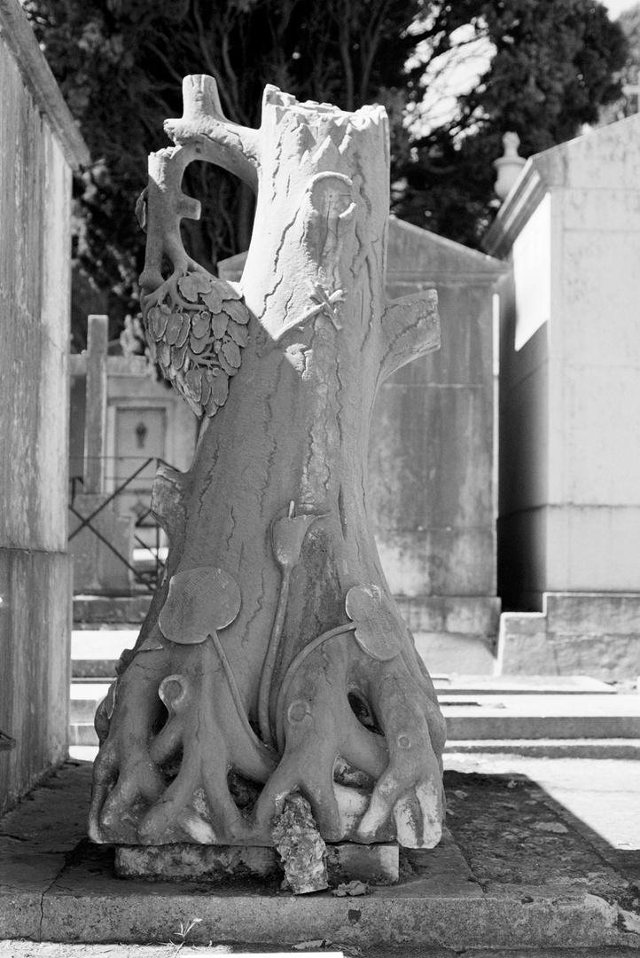 """Lisboa / Cemitério dos Prazeres """"Der Friedhof der Vergnügungen"""""""