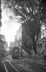 [Lisboa XLIII]
