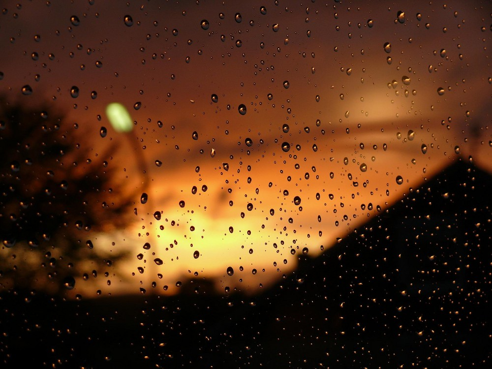 Listen. The rain tries to tell you a story..*