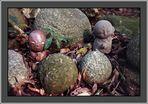 Little Buddha in einem Wald um Nara/Japan