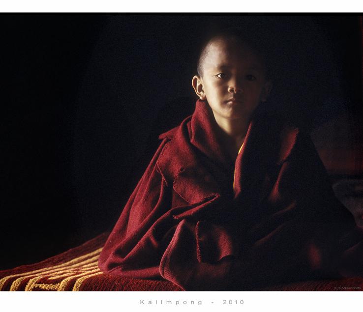 little Buddhas nonverbaler Dialog mit Kamera und Mensch