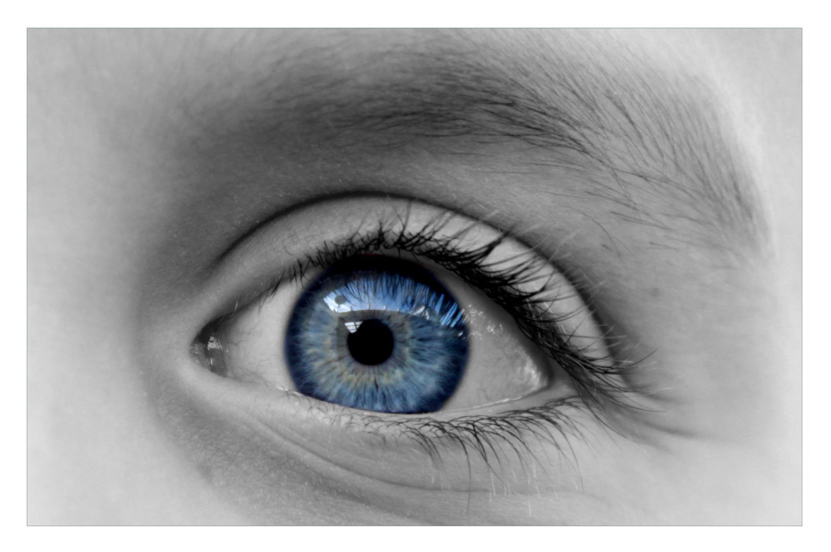... little eyes ... II