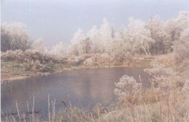 Little pond at November