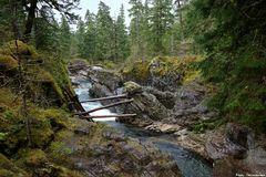 Little Qualicum River Falls
