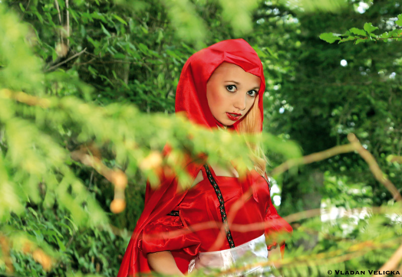 "Little ""Red Riding Hood"" lost in the forest"