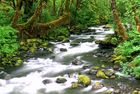 Little River in den Smoky Mountains