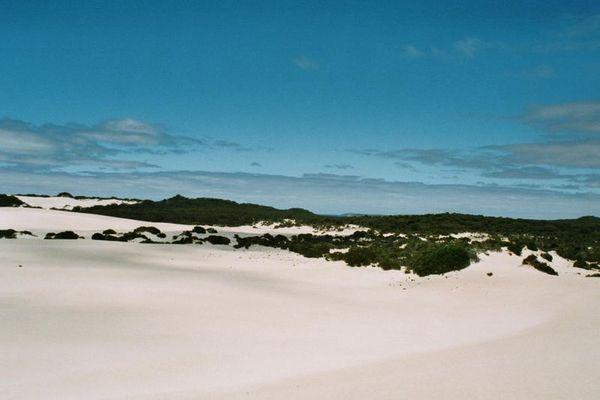 Little Sahara...
