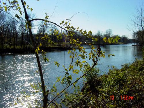 Little Turtle River