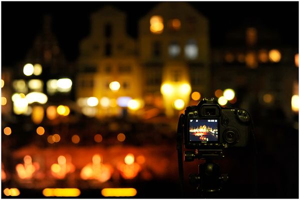 Live Stintmarkt View